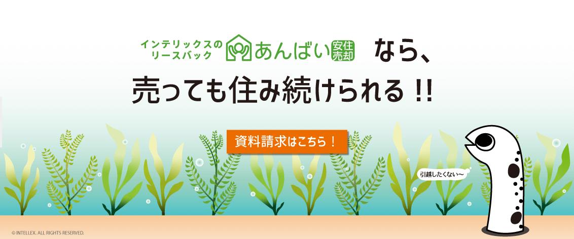 あんばい(株式会社インテリックス)の画像